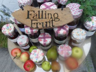 Falling Fruit Ballinteer